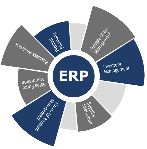 Building custom ERP software system  image